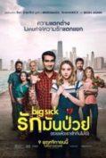 The Big Sick (2017)