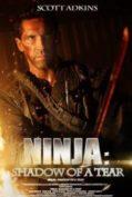 Ninja 2 Shadow of A Tear นินจานักฆ่าพยายาม 2