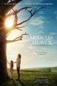 Miracle from Heaven 2016 ปฎิหาริย์จากสวรรค์